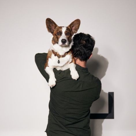 visit our dog friendly office and see why we are one of the best marketing agencies in sydney